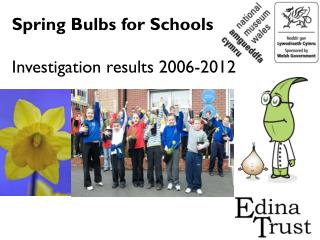 Spring Bulbs for Schools Investigation results 2006-2012