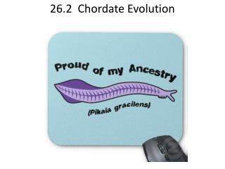 26.2  Chordate Evolution