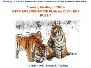 Planning Meeting of TRC's  GTRP IMPLEMENTATION PLAN for 2013 - 2014 RUSSIA