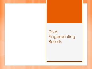 DNA Fingerprinting Results