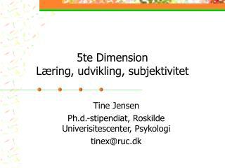 5te Dimension Læring, udvikling, subjektivitet