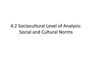 4.2  Sociocultural  Level of Analysis: Social and Cultural Norms