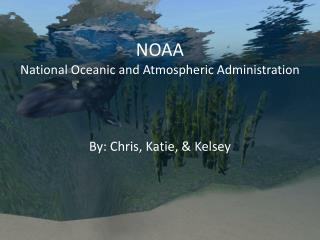 NOAA National Oceanic and Atmospheric Administration