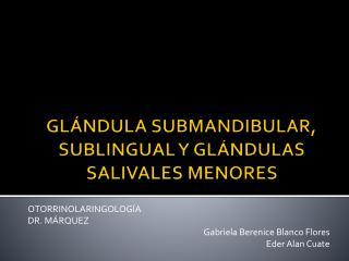 GLÁNDULA SUBMANDIBULAR, SUBLINGUAL Y GLÁNDULAS SALIVALES MENORES
