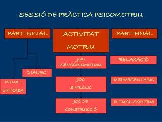 SESSI� DE PR�CTICA PSICOMOTRIU