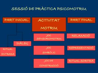 SESSIÓ DE PRÀCTICA PSICOMOTRIU