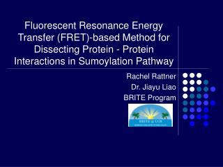 Rachel Rattner Dr. Jiayu Liao BRITE Program
