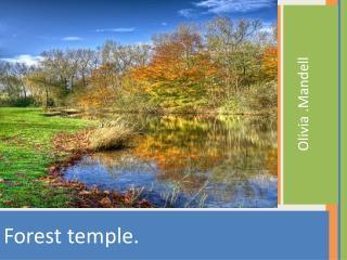 F orest temple.