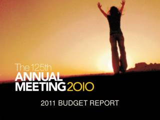 2011 BUDGET REPORT