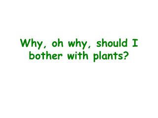 Why, oh why, should I bother with plants?