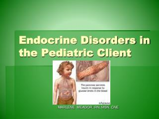 Endocrine Disorders in the Pediatric Client
