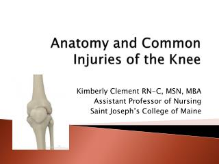Anatomy  and  Common Injuries of the Knee