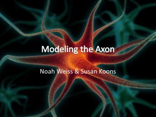 Modeling the Axon