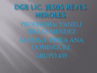 DGB LIC. JESUS REYES HEROLES