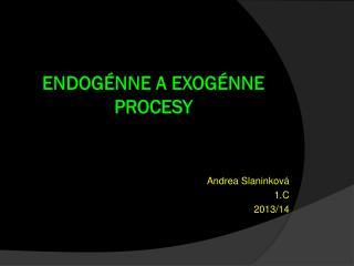Endog�nne A exog�nne procesy