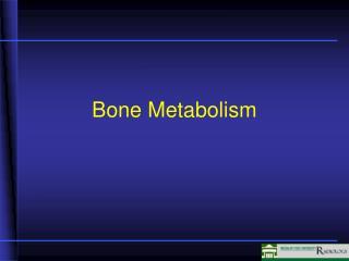 Bone  Metabolism