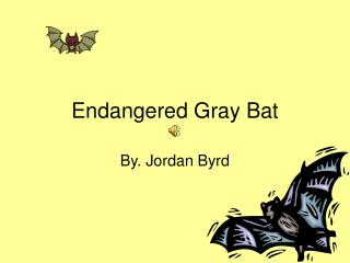 Endangered Gray Bat