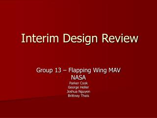 Interim Design Review
