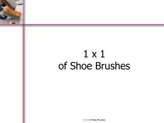 1 x 1 of Shoe Brushes