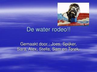 De water rodeo!!