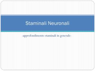 Staminali Neuronali