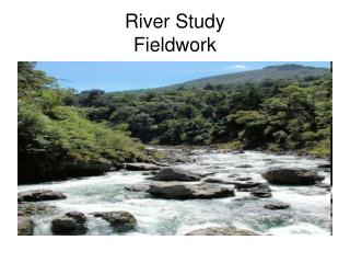 River Study  Fieldwork