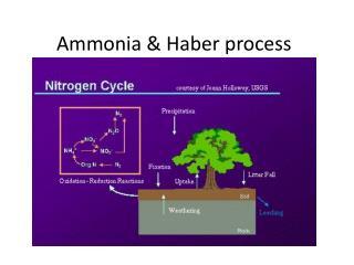 Ammonia &  H aber process