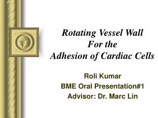 Rotating Vessel Wall For the Adhesion of Cardiac Cells