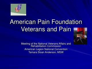 American Pain Foundation Veterans and Pain