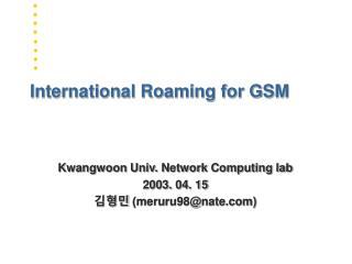 International Roaming for GSM