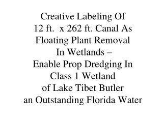 Prop Dredging – Class 1 Wetland – Create 12' x 262' Canal For 5 Isolated Wetland Frontage Lots