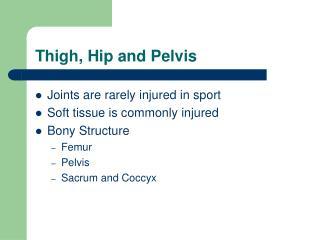 Thigh, Hip and Pelvis