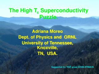 The High T c  Superconductivity Puzzle.