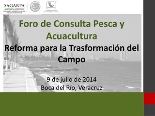 Foro de Consulta Pesca y Acuacultura Reforma para la Trasformación del Campo  9 de  julio  de 2014