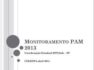Monitoramento PAM 2013