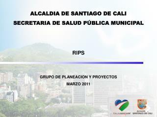RIPS GRUPO DE PLANEACION Y PROYECTOS MARZO 2011
