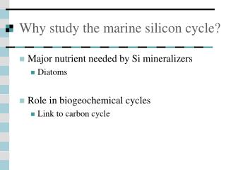 Why study the marine silicon cycle?
