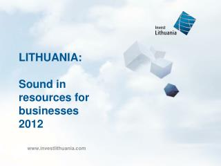 LITHUANIA: Sound in resources for businesses 2012
