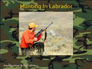 Hunting In Labrador