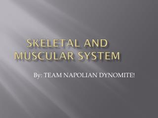 Skeletal and muscular  s ystem