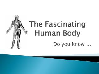 The Fascinating Human Body