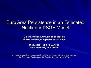 Euro Area Persistence in an Estimated Nonlinear DSGE Model