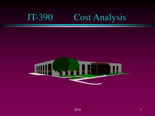 IT-390		Cost Analysis