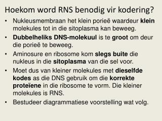 Hoekom word RNS benodig vir kodering?