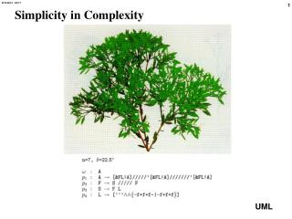 Simplicity in Complexity