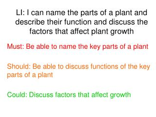 Must: Be able to name the key parts of a plant