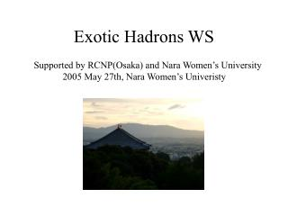 Exotic Hadrons WS
