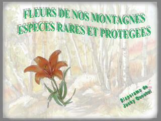 FLEURS DE NOS MONTAGNES ESPECES RARES ET PROTEGEES