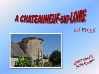 A CHATEAUNEUF-sur-LOIRE