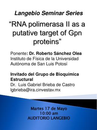 """RNA  polimerasa  II as a putative target of  Gpn  proteins"""